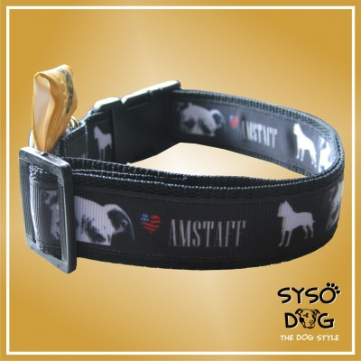Amerikai staffordshire terrier nyakörv